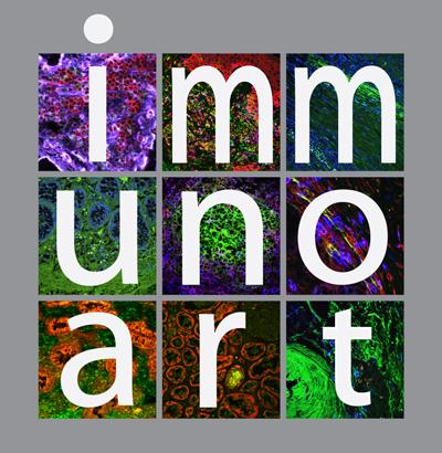 logo-immuno-art-klein